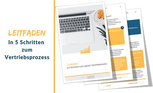 Banner Leitfaden-In 5-Schritten-zum-eigenen-Vertriebsprozess