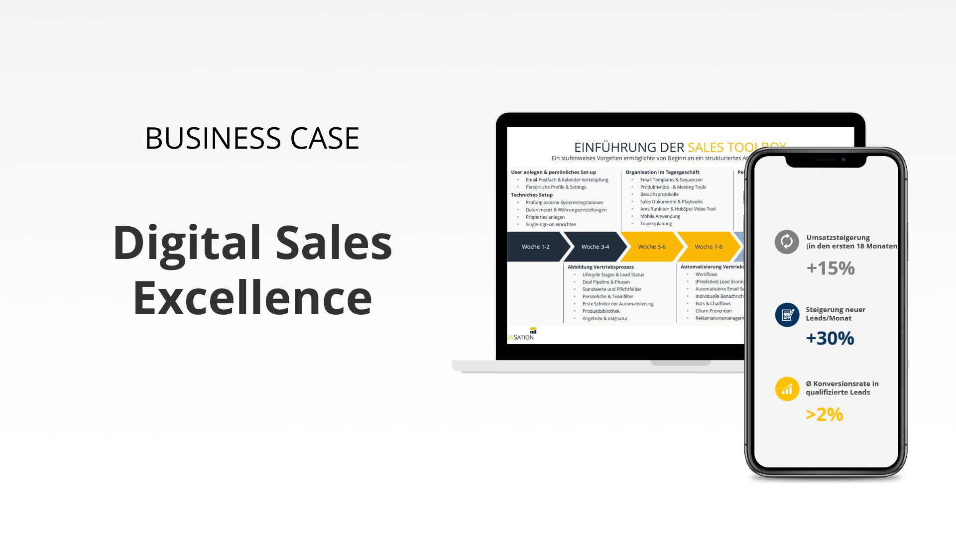 business-case-salessation-b2b-digital-sales-excellence (5)
