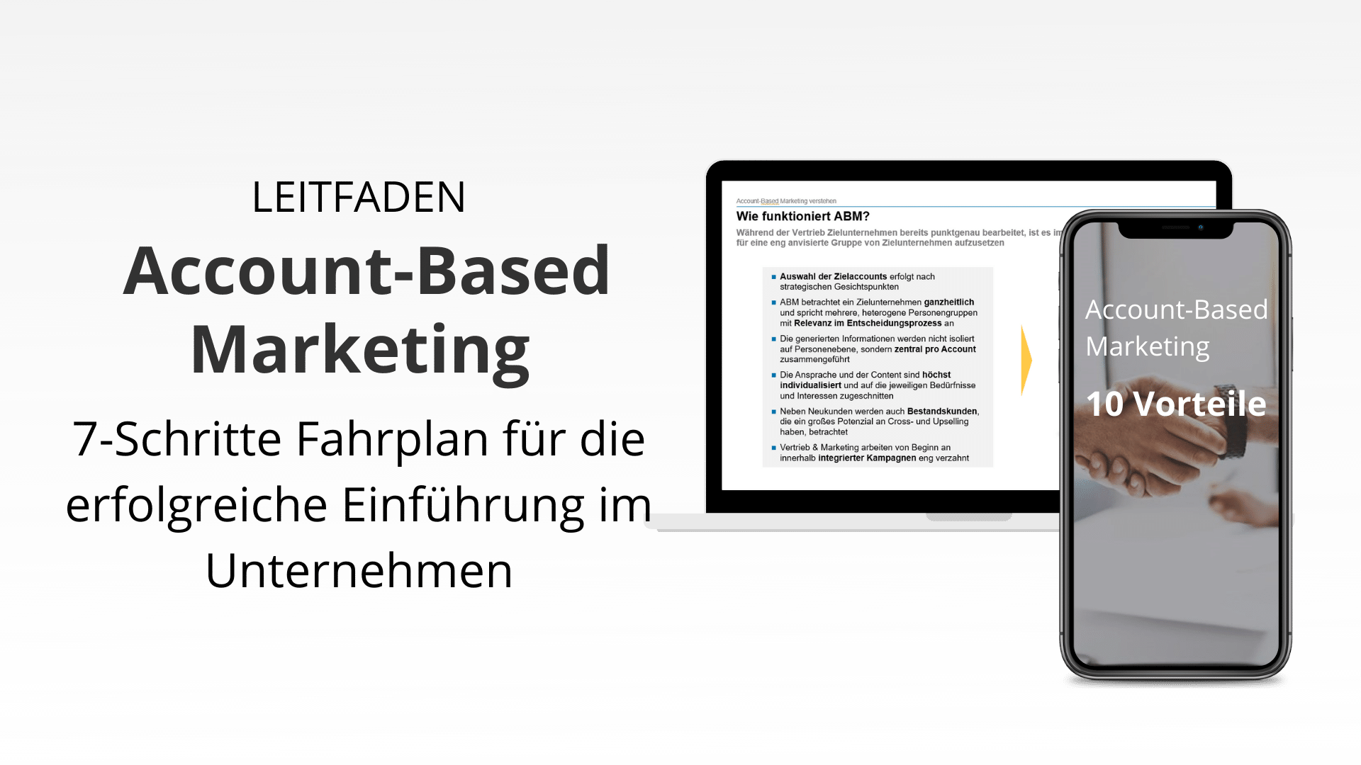 leitfaden-salessation-abm-7-schritte-fahrplan