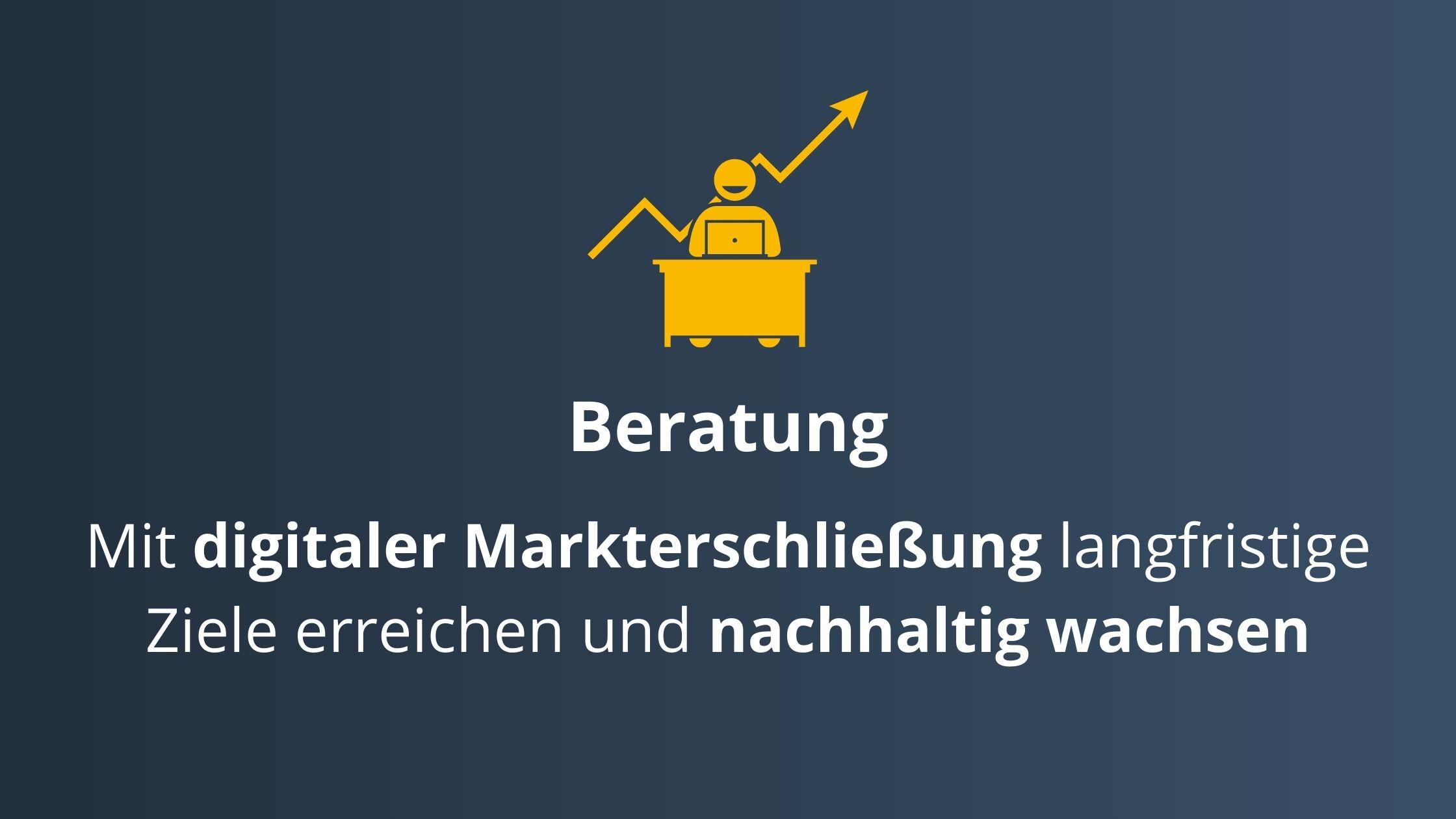 SalesSation-Leistungen_Beratung
